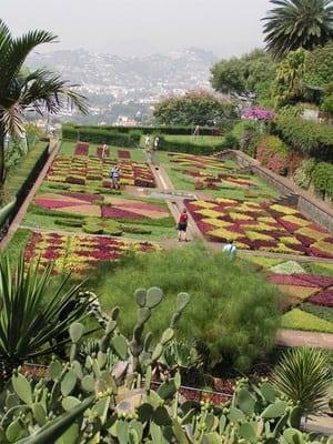Garten auf Madeira Jardim Botanico Funchal