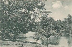 Alkaff Gardens Singapore Lake