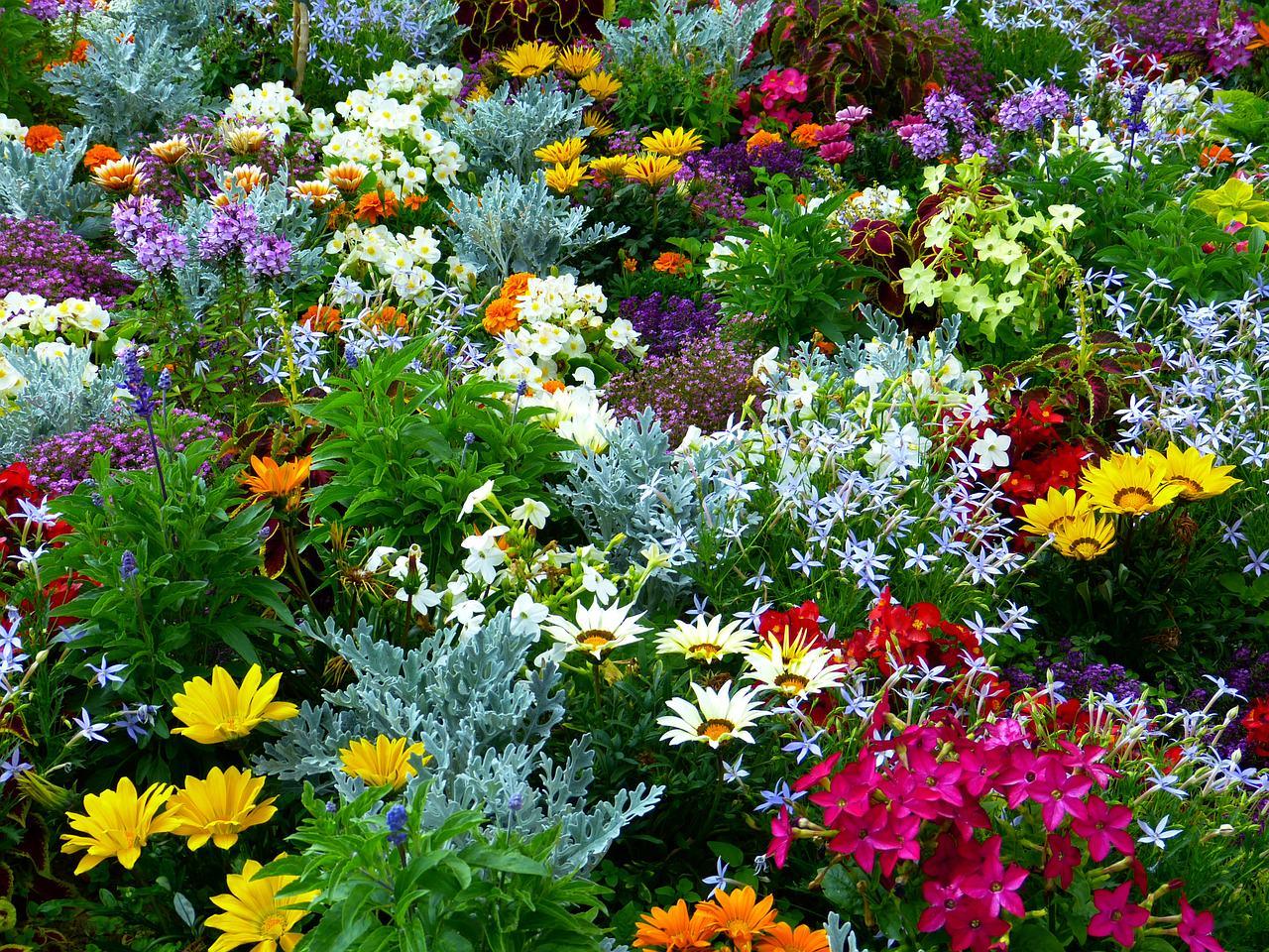flower-garden-634578_1280