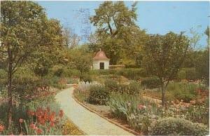 Flower Garden Virginia - Mount Vernon - USA